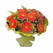 Tokat uluslararası çiçek gönderme  11 adet seçme gerbera çiçegi