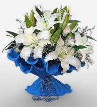 4 dal kazablanka çiçeğinden buket  Tokat çiçek yolla