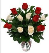 Vazo içerisinde 6 kırmızı 6 beyaz gül  Tokat çiçek mağazası , çiçekçi adresleri
