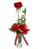 vazo içerisinde 1 adet kırmızı gül  Tokat anneler günü çiçek yolla
