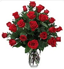 Tokat güvenli kaliteli hızlı çiçek  24 adet kırmızı gülden vazo tanzimi