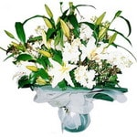 Tokat kaliteli taze ve ucuz çiçekler  Kazablanka ve gerbera demeti