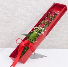 Kutu içerisinde 3 adet kırmızı gül  Tokat çiçek gönderme sitemiz güvenlidir