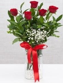 cam vazo içerisinde 5 adet kırmızı gül  Tokat çiçek gönderme