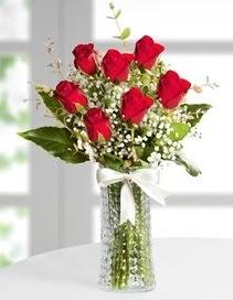 Cam vazoda 7 adet kırmızı gül  Tokat çiçek online çiçek siparişi
