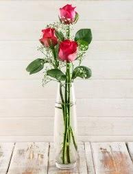 Cam içerisinde 3 kırmızı gül  Tokat hediye sevgilime hediye çiçek
