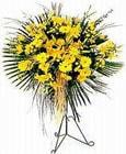 Tokat internetten çiçek siparişi  Sari kazablanka Ferforje