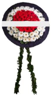 mozele çiçeği  Tokat ucuz çiçek gönder