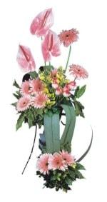 Tokat çiçekçiler  Pembe Antoryum Harikalar Rüyasi