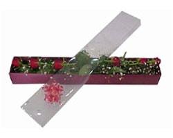 Tokat çiçek , çiçekçi , çiçekçilik   6 adet kirmizi gül kutu içinde