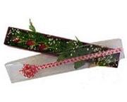 Tokat çiçek mağazası , çiçekçi adresleri  3 adet gül.kutu yaldizlidir.