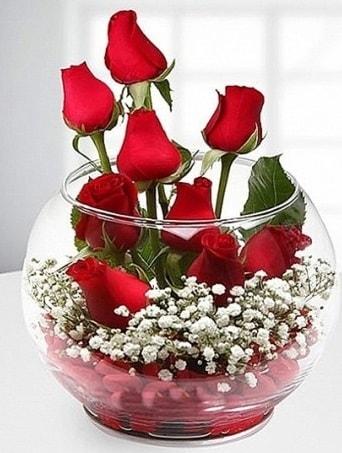 Kırmızı Mutluluk fanusta 9 kırmızı gül  Tokat güvenli kaliteli hızlı çiçek