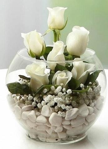 Beyaz Mutluluk 9 beyaz gül fanusta  Tokat güvenli kaliteli hızlı çiçek