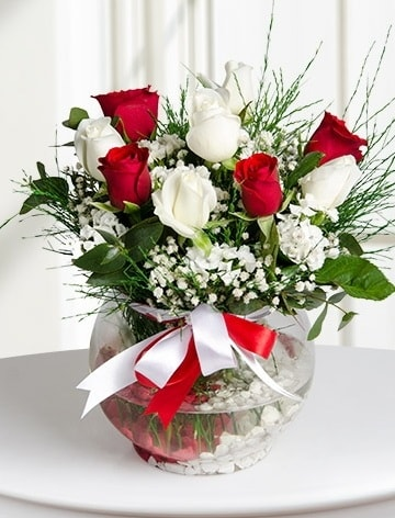 Aşk Küresi  5 beyaz 5 kırmızı gül fanusta  Tokat yurtiçi ve yurtdışı çiçek siparişi