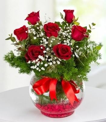 fanus Vazoda 7 Gül  Tokat çiçek online çiçek siparişi