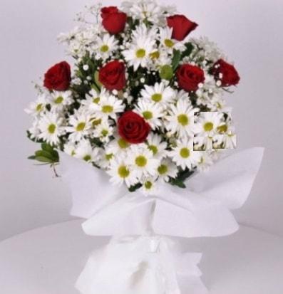7 adet kırmızı gül ve papatyalar krizantem  Tokat yurtiçi ve yurtdışı çiçek siparişi