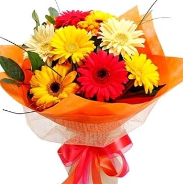 9 adet karışık gerbera buketi  Tokat çiçek online çiçek siparişi