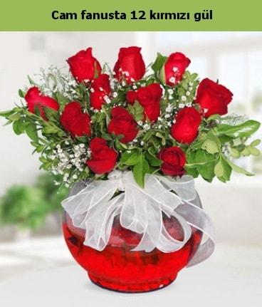 Cam içerisinde 12 adet kırmızı gül  Tokat yurtiçi ve yurtdışı çiçek siparişi