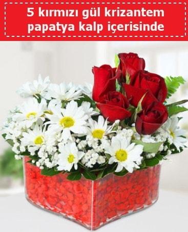 mika kalp içerisinde 5 kırmızı gül papatya  Tokat 14 şubat sevgililer günü çiçek